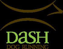 Dash Dog - Custom Dog Running Leash Partner