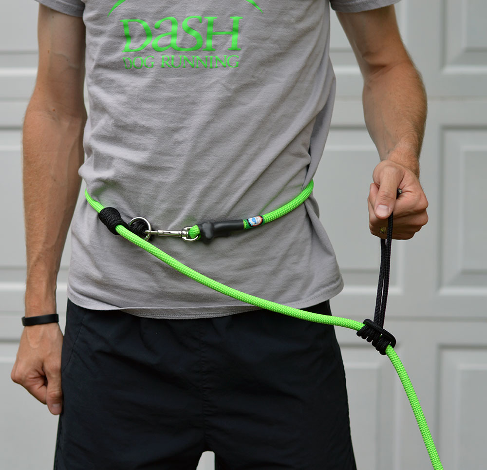 The+Dash+Dog+Running+Leash.jpg