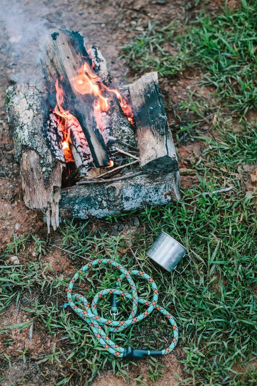 Surepaw Campfire Leash.jpg