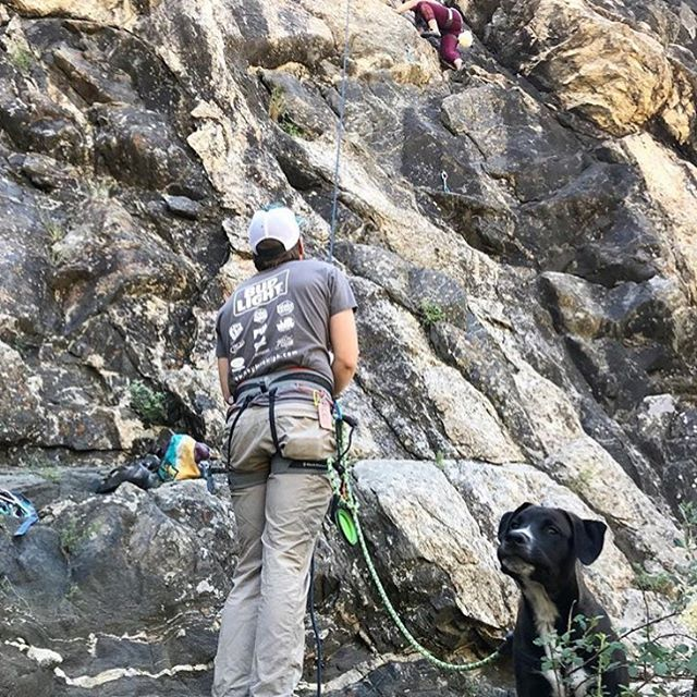 @hannahxxnoelle and @modicombat with jake-the-dog making CO climbing look doggone good! Anyone notice that green @conrad_anker Ruff-Guider leash clipped to the harness 😁? Thanks for taking Surepaw on your adventures! Remember: ♻️ rope and make 🐶 leashes. #climbingdog #upcycle #brosbelayladiesclimb #climbingwithdogs