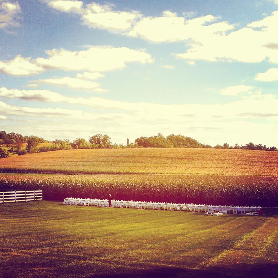 Elegant Lancaster Wedding farm Field.jpg
