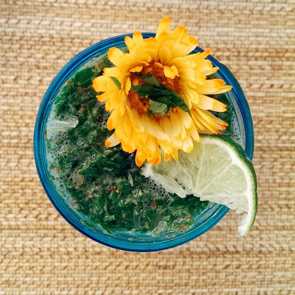 herb lemonade.jpg