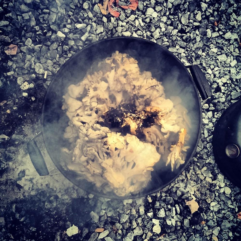 SMoking Mushrooms.jpg