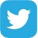 twitter icon website.jpg