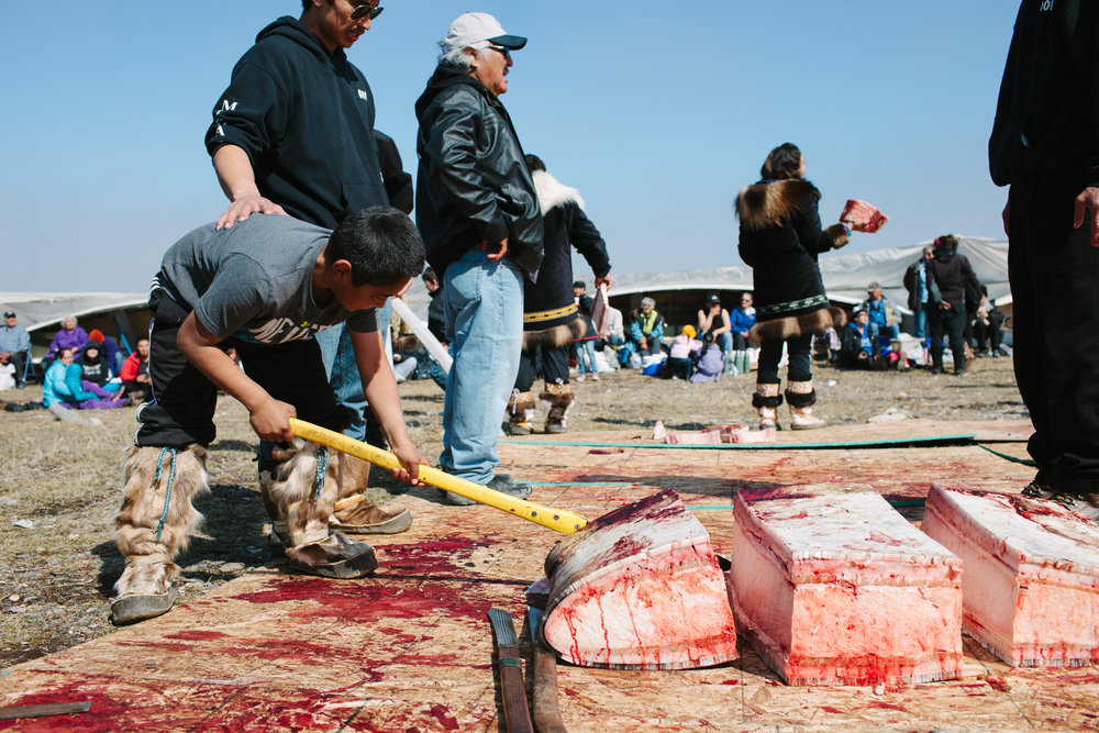 Point Hope whaling festival Alaska photojournalist