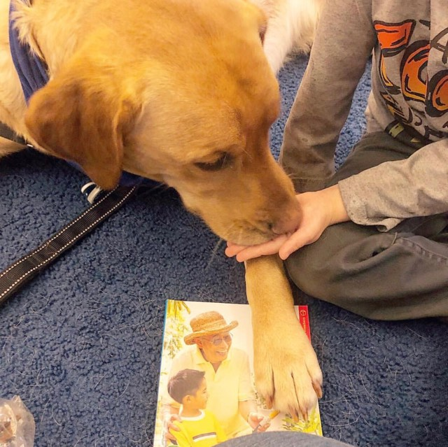 pet therapy read.jpg