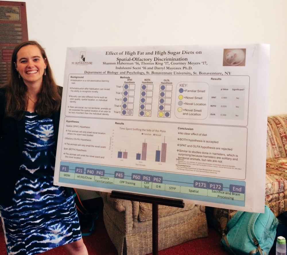 "Senior Biology major Shannon Haberman presents work with Dr. Darryl Mayeaux on ""Effect of High Fat and High Sugar Diets on Spatial-Olfactory Discrimination"""