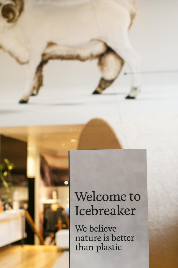 icebreaker-3380.jpg