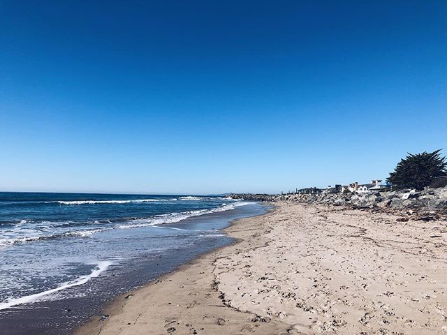Santa Barbara beach 47 of 49: Sandyland Cove Beach! . . . #sbbeaches2018 #santabarbara #santabarbaracounty #californiacoast #californiaholics #california_igers #californiacaptures #explorecalifornia #naturalcalifornia #unlimitedcalifornia #visitcalifornia #wildcalifornia #exploringnature #surroundedbynature #lostinnature #natureenthusiast #getlostinnature #exploreoutdoors #natgeocreative #yourshot #igersnature #naturelover #naturehub #discoverearth #naturegirl #carpinteria