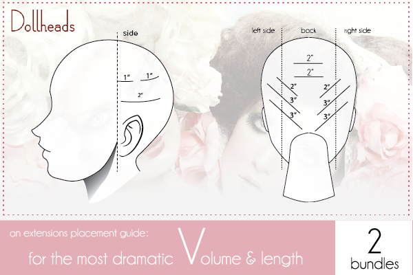 dollheads extensions diagram_2 pack v diagram.png