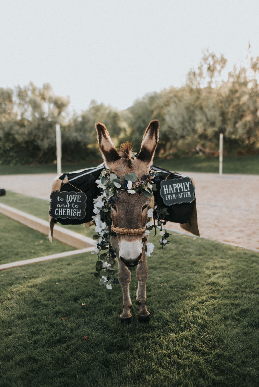 Phoenix Wedding26.jpg