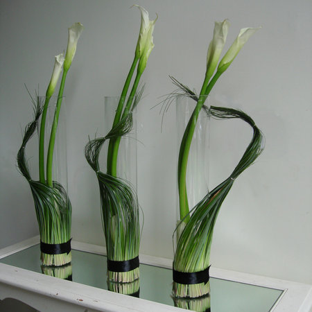 Think Calla w:beargrass.jpg