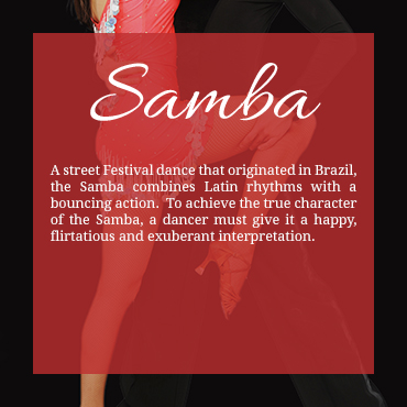 Samba_Back.jpg
