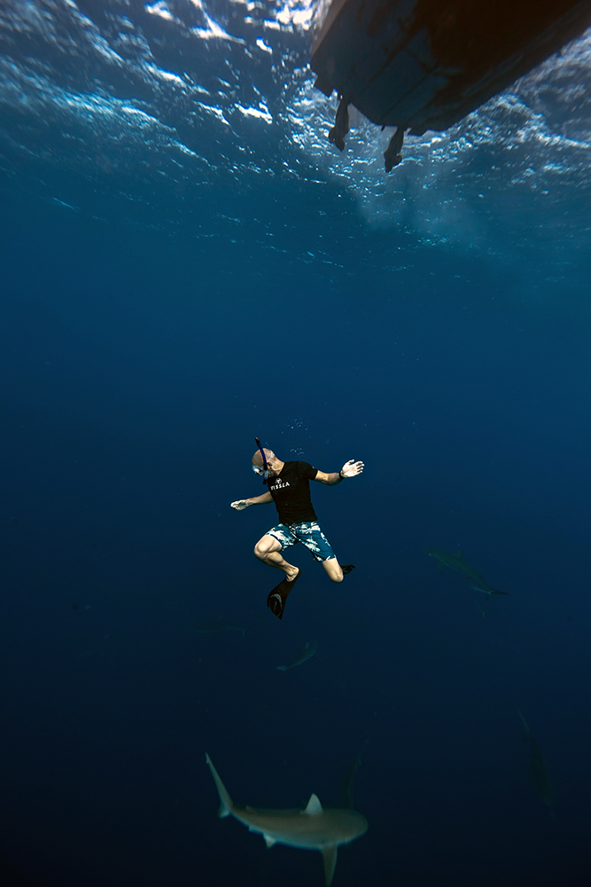 Swimming with and photographing sharks in Hawaii.  Photo by Juan Oliphant.