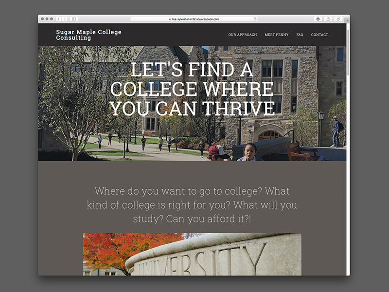 Sugar Maple College Consulting Website Design |  view site