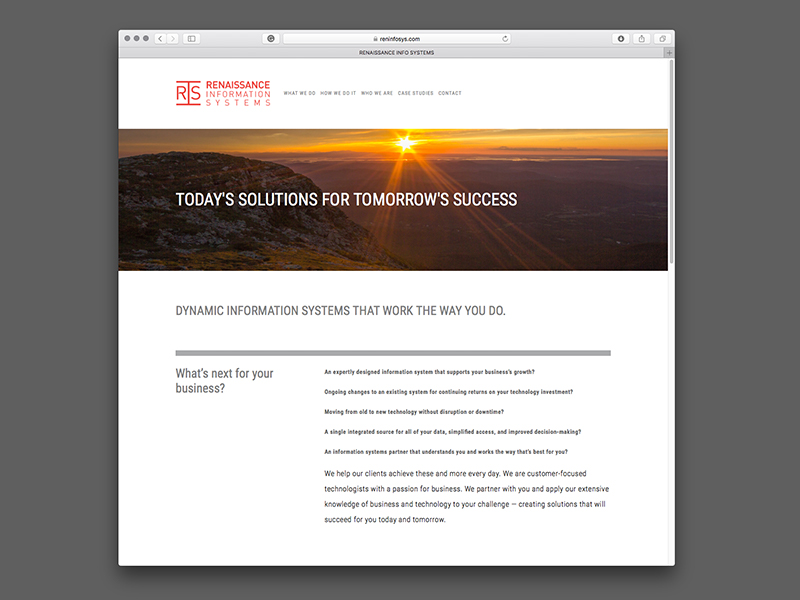Renaissance Information Systems Website Design | view site