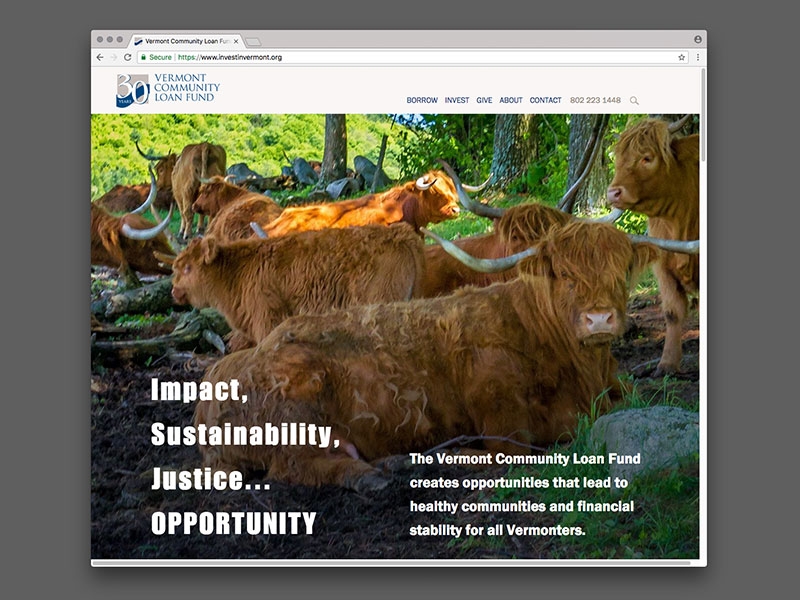 Vermont Community Loan Fund Website Design |  view site