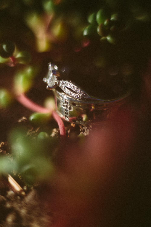 Rick-Elizabeth-Wedding-484.jpg