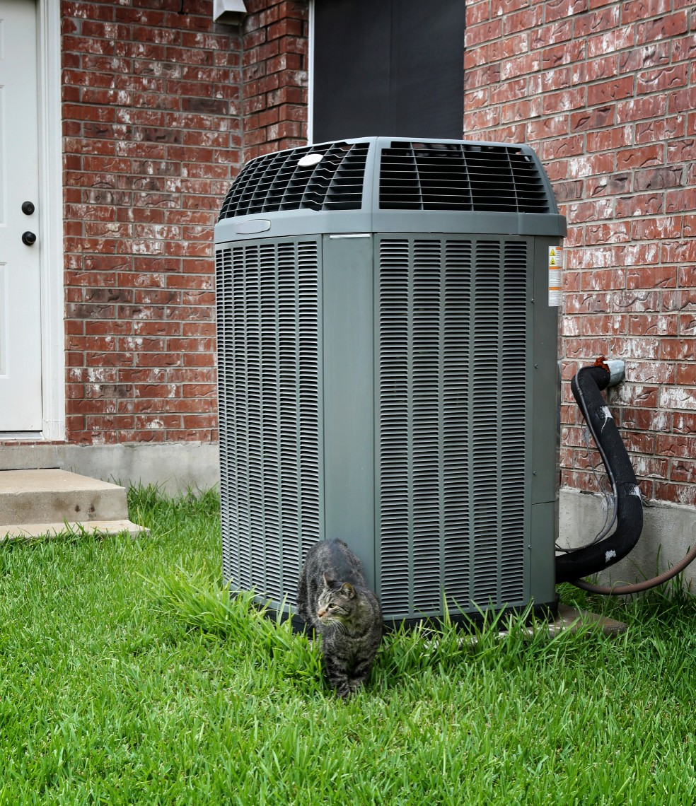 Proper AC maintenance will keep your home purrr-fectly cool. Plus, you can accessorize your unit with your fluffy friend.