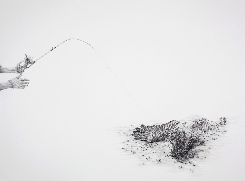"Bycatch , 22""X26"", Graphite on paper, 2013"