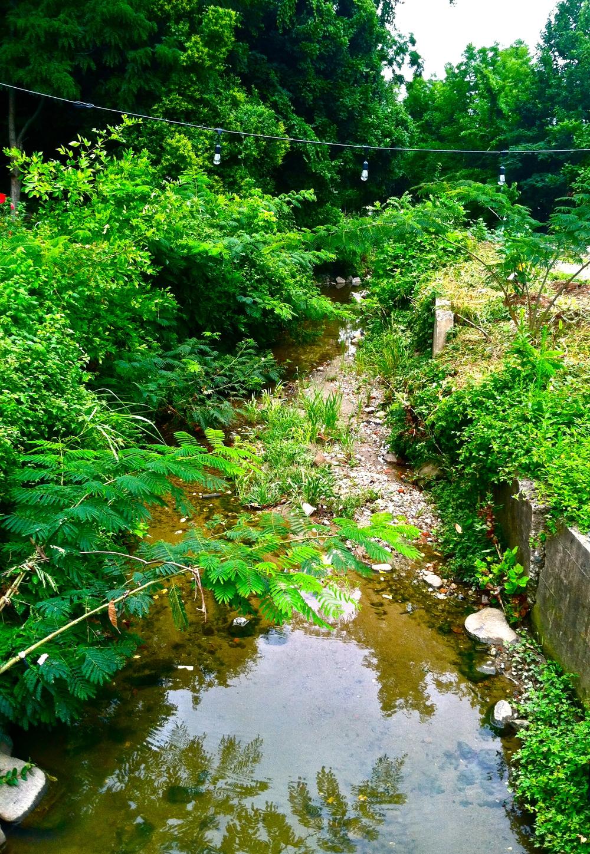 The Creek That Runs Beside The Gaia Garden