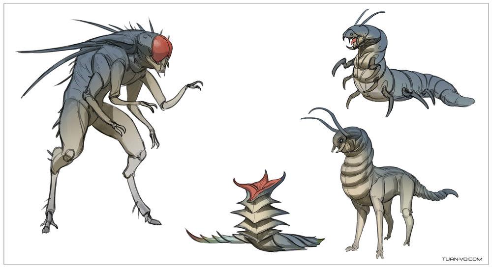 Bug_sketches1.jpg