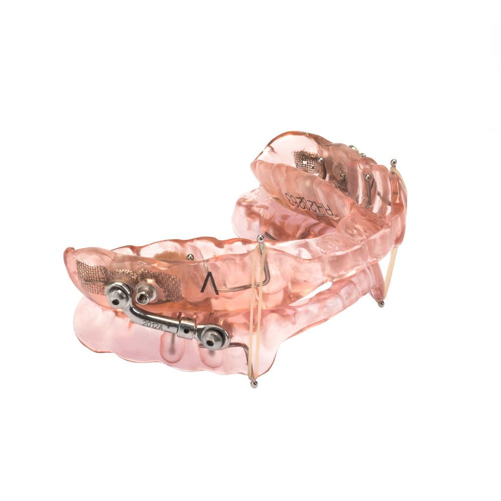 Pink-Micro-REVISED-WO.jpg