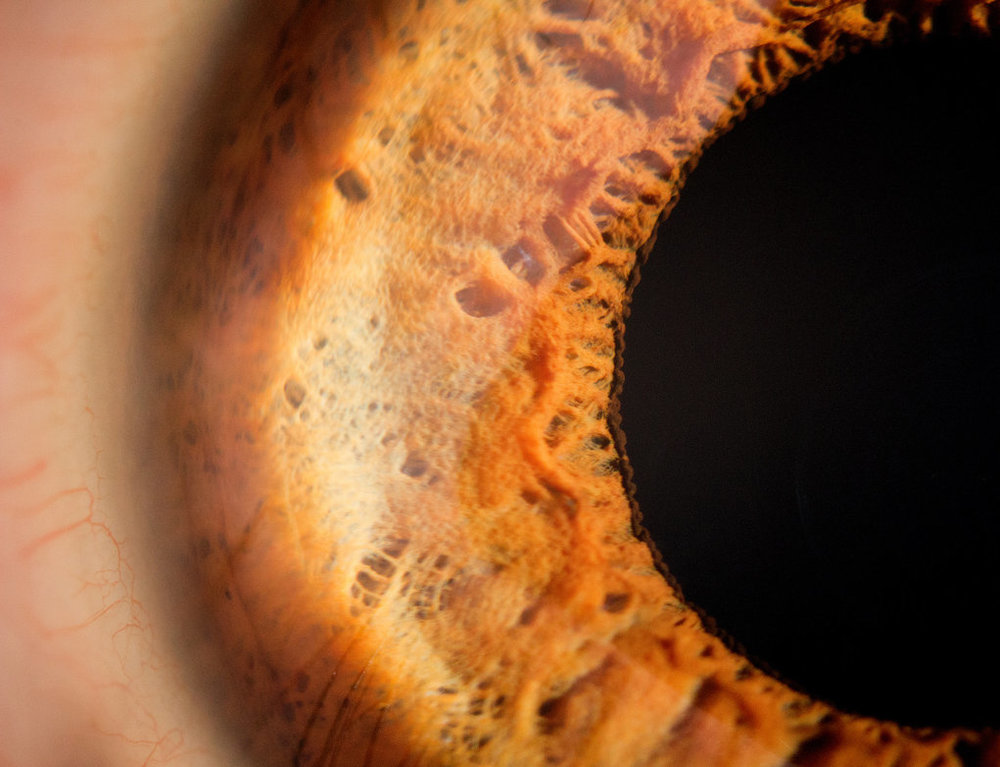 another_eye_macro_by_m4773-d5c4kak.jpg