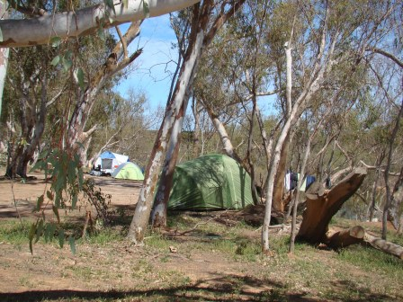 tranquil camp sites by the Murchison River at Murchison House Station
