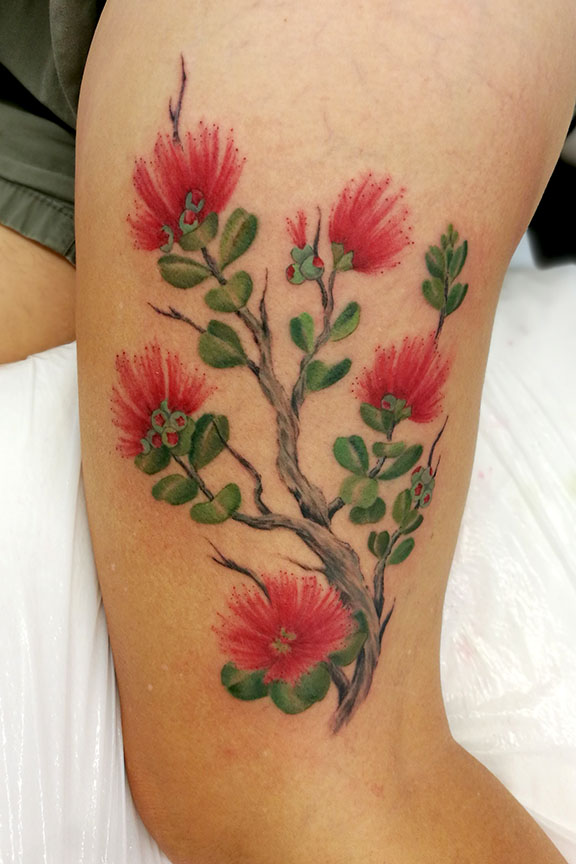 Painterly Ohia