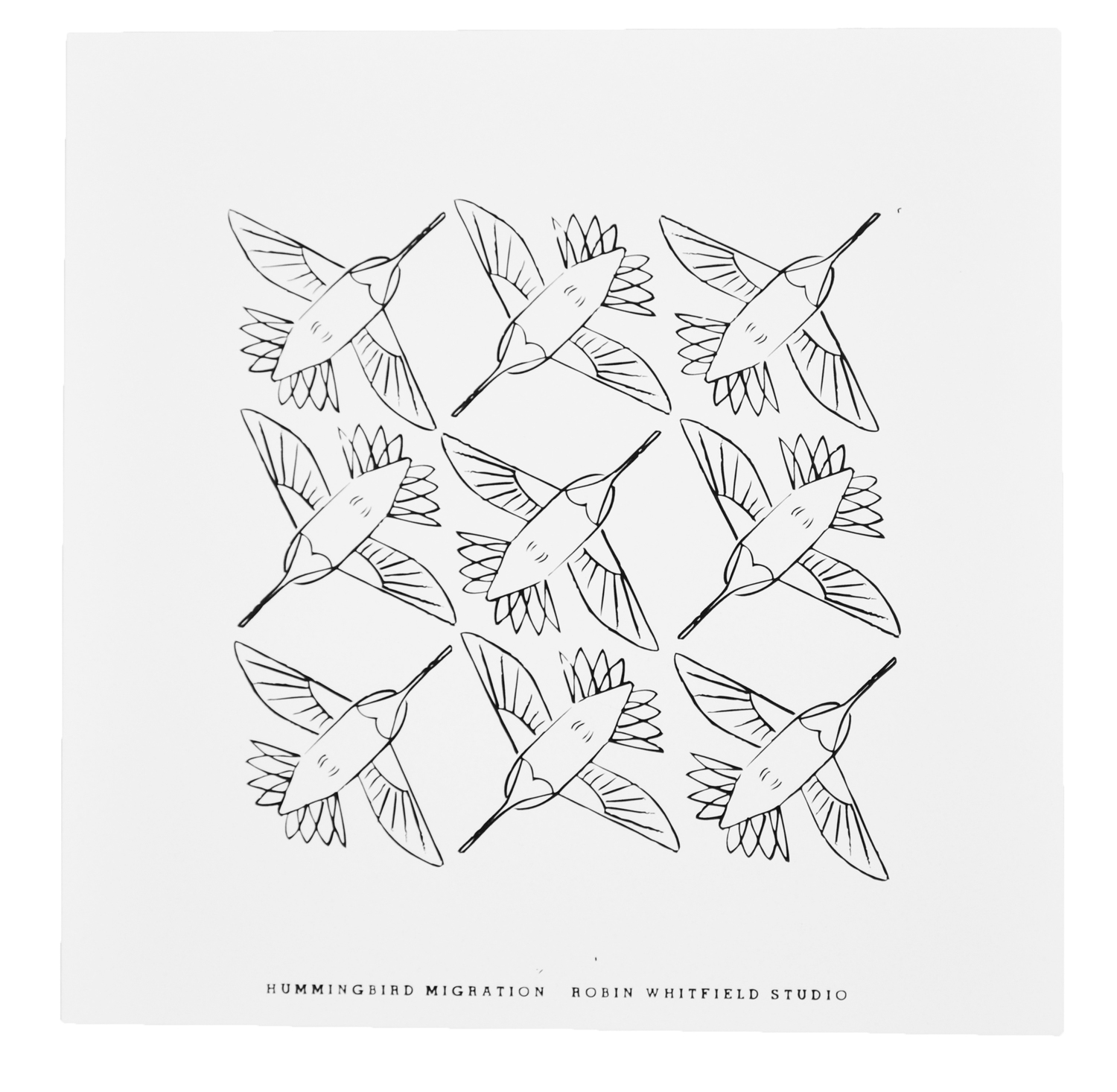 Color Your Own Print Hummingbird Migration Robin