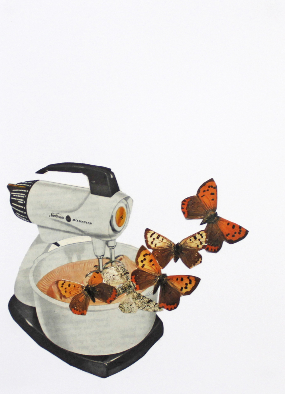 Mix Master Moths , Isobella Grist