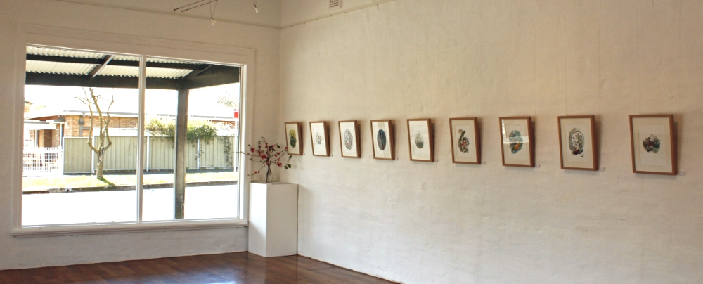Forest and Feather - Amelia Herbertson, September 2014, The Corner Store Gallery, Orange NSW, photograph by Madeline Young