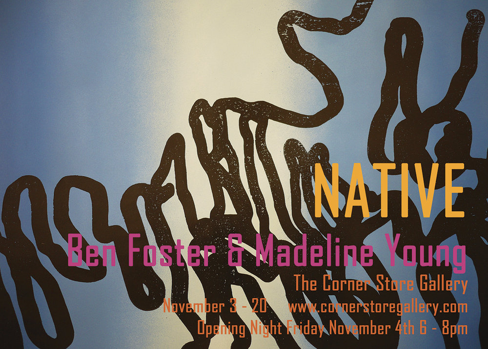"Ben Foster ""Native"" exhibition - The Corner Store Gallery, Orange NSW"
