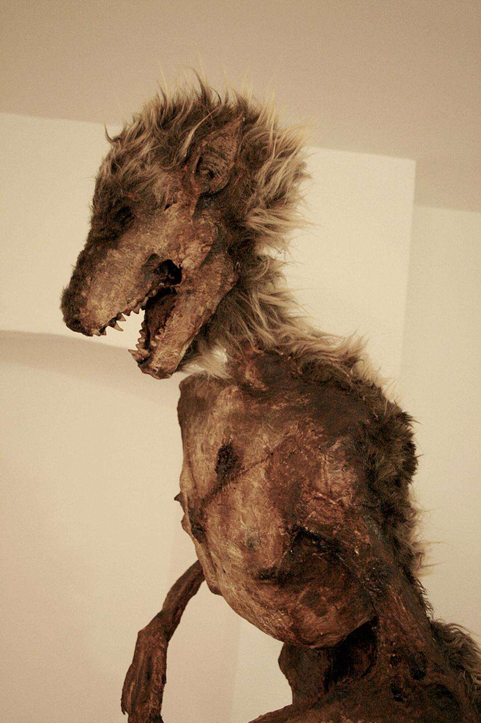 wolfy4.png