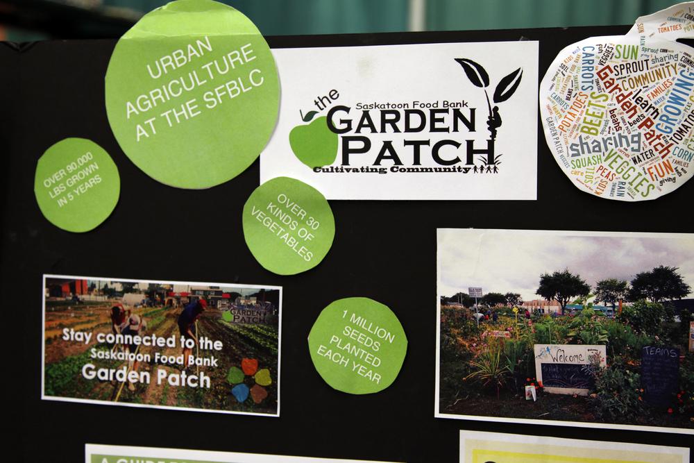 garden patch.JPG