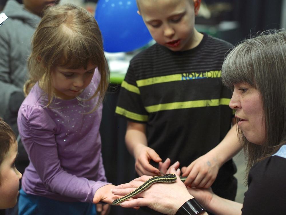 kids and snake 3.jpg