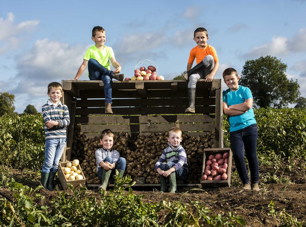 (l-r) Bernard, Tom, Patrick, Darrel, Padraic and Sean McKeown on their potato farm in Castletown, Navan announcing the details of Bord Bia's National Potato Day which takes place on Friday 5th October 2018. On the day, a range of events, talks and promotional activity will take place to celebrate Ireland's most loved vegetable and the world's third important crop. For more visit    www.potato.ie