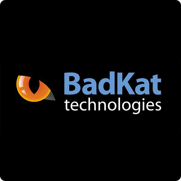 BadKat.jpg