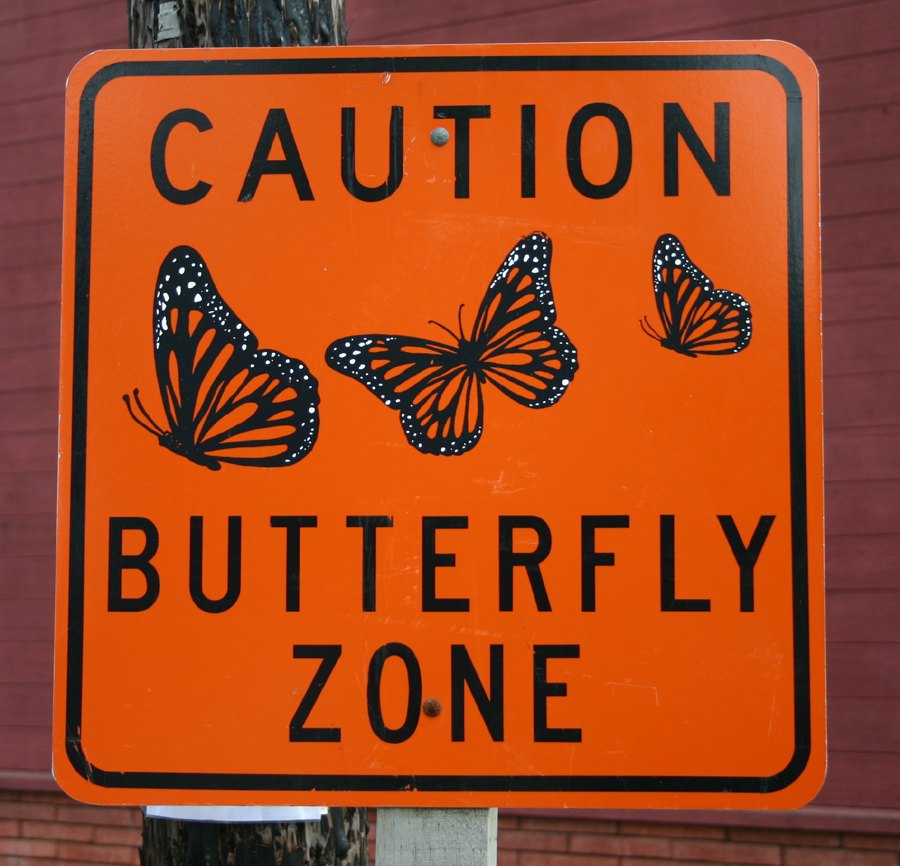 ButterflyCrossingSign.jpg