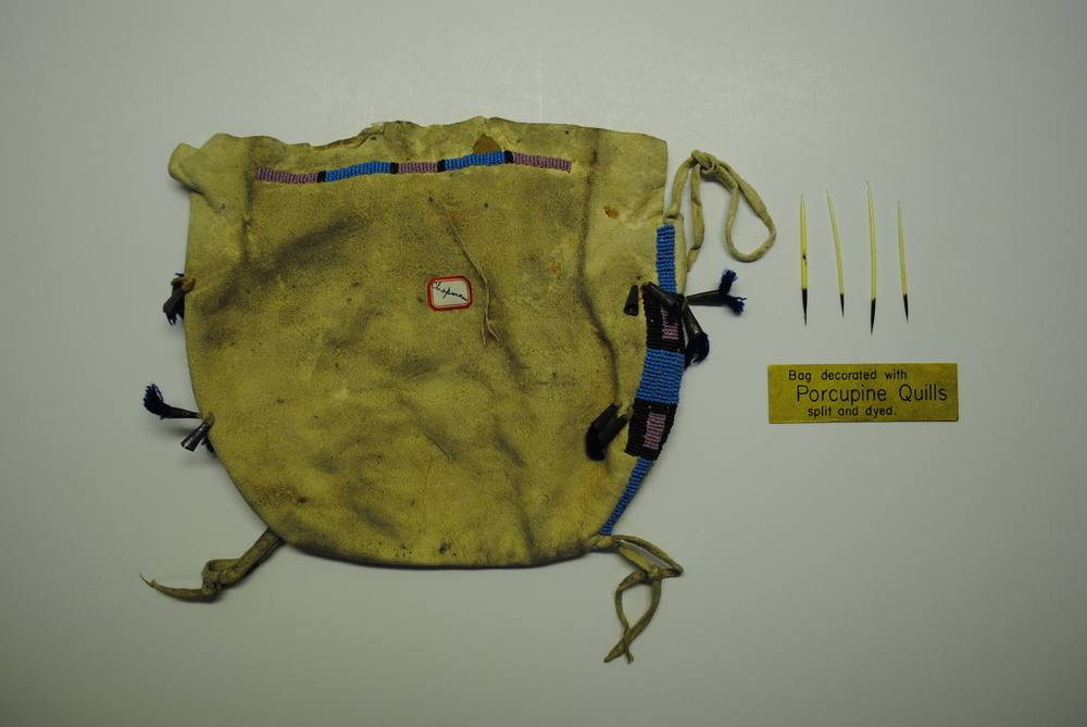 Northern Plains Hide Bag