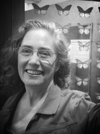 Annie Holdren, Exhibitions Curator