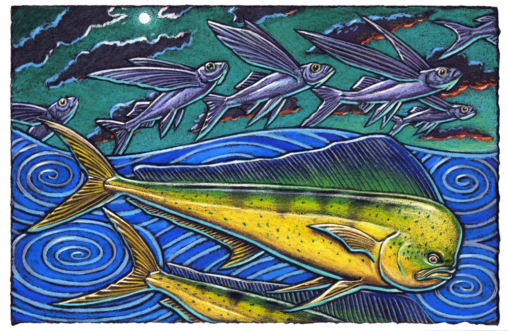 The Mahi Mahi is the fish for me    Rocketing about the deep blue sea    Flying fish in the air    Had better take care    So into the sky they do flee.