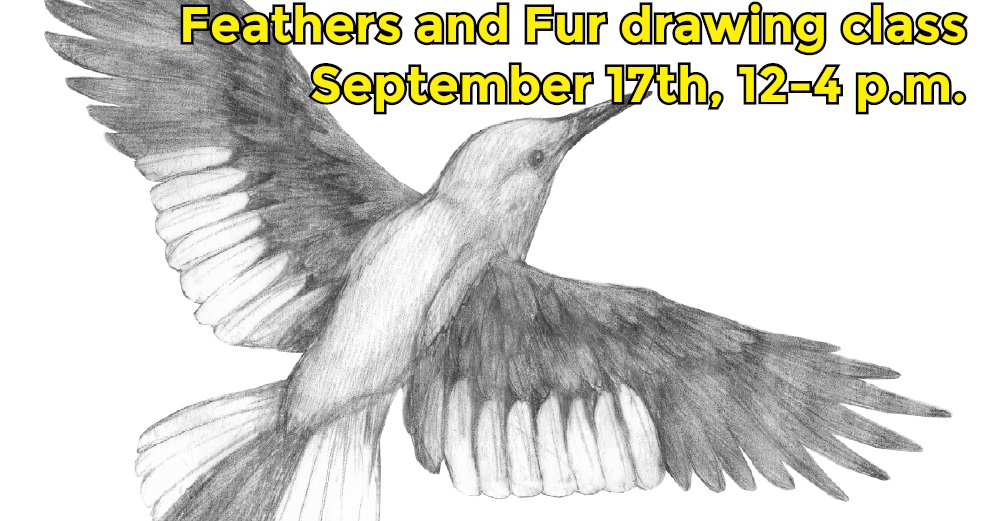 FeathersandFurBanner-1.jpg