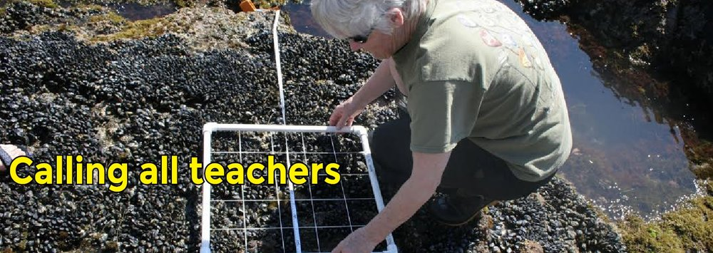 TeacherBanner-2.jpg