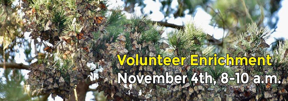 Volunteer Enrichment-1.jpg