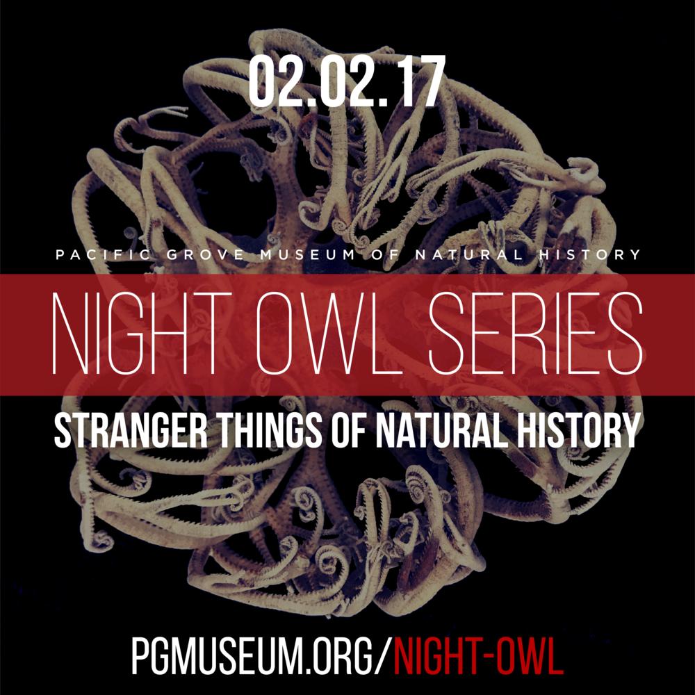 NightOwl_StrangerThings_Instagram-04.png