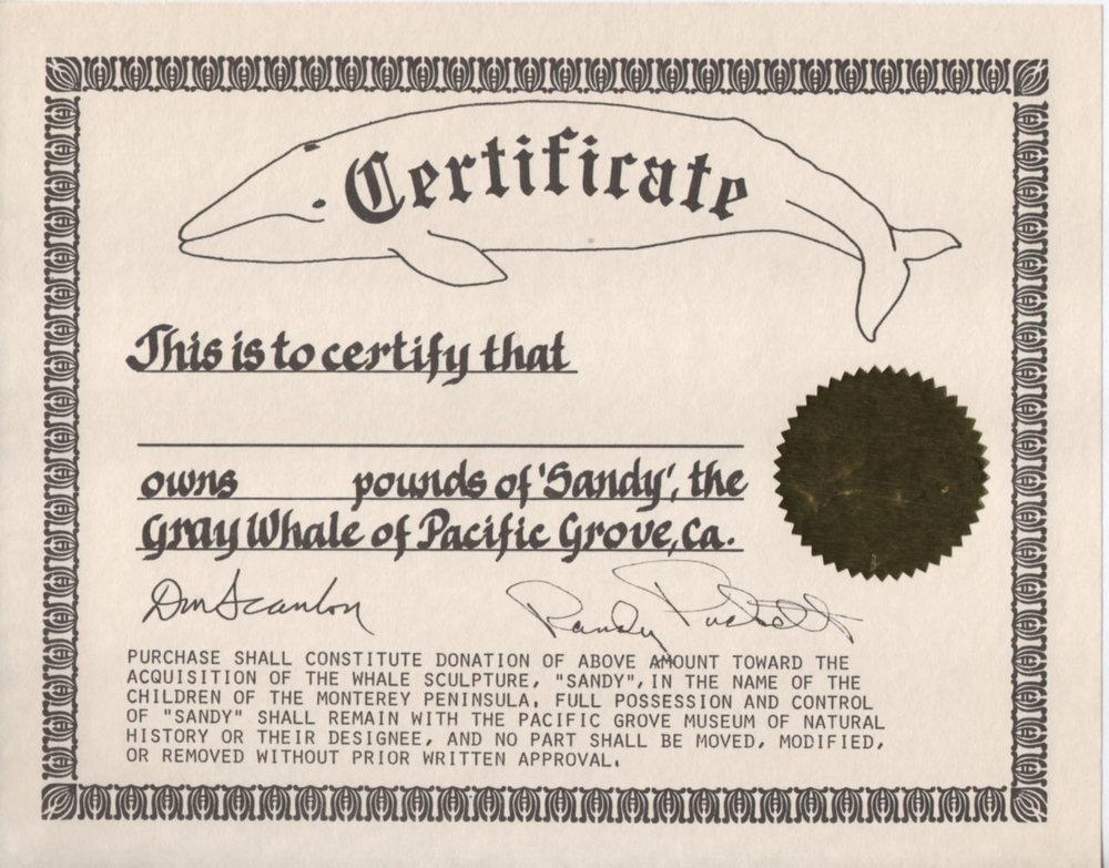 Certificate-1.jpg