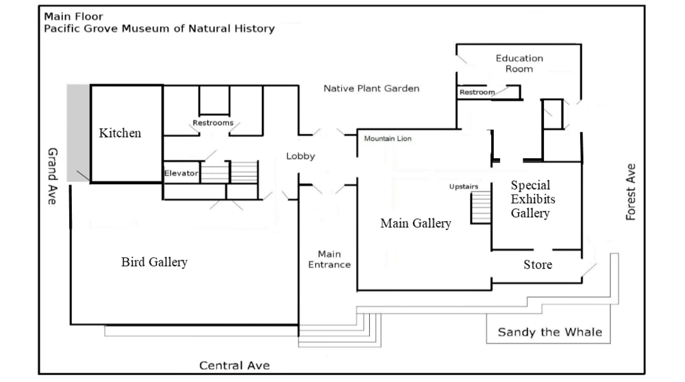 Museum floor plan excluding floating exhibits.
