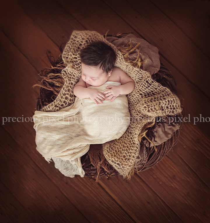 precious pixel photography, newbon photographer southern michigan